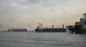 Singaporesea